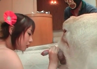 Lustful chick is enjoying awesome zoo sex